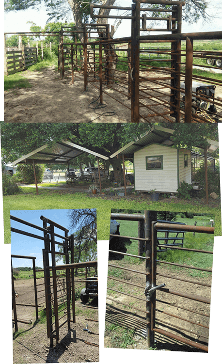 Custom Built Cattle Pens